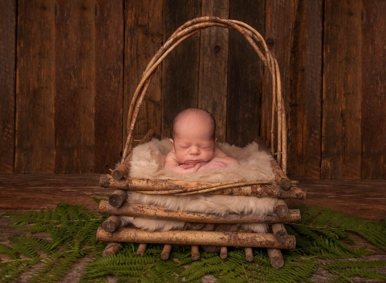 newborn in basket baby photographer comox valley