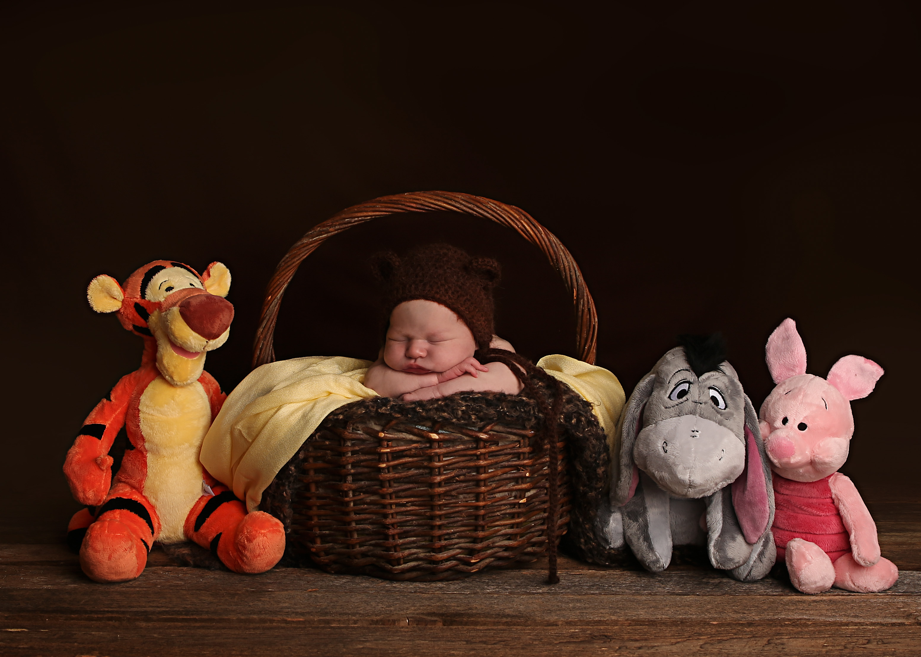 winnie the pooh themes newborn photo comox valley