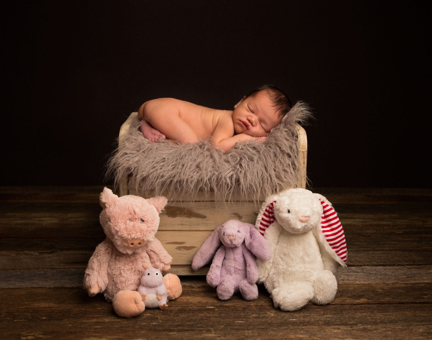 baby with stuffies photo courtenaybaby with stuffies photo courtenay