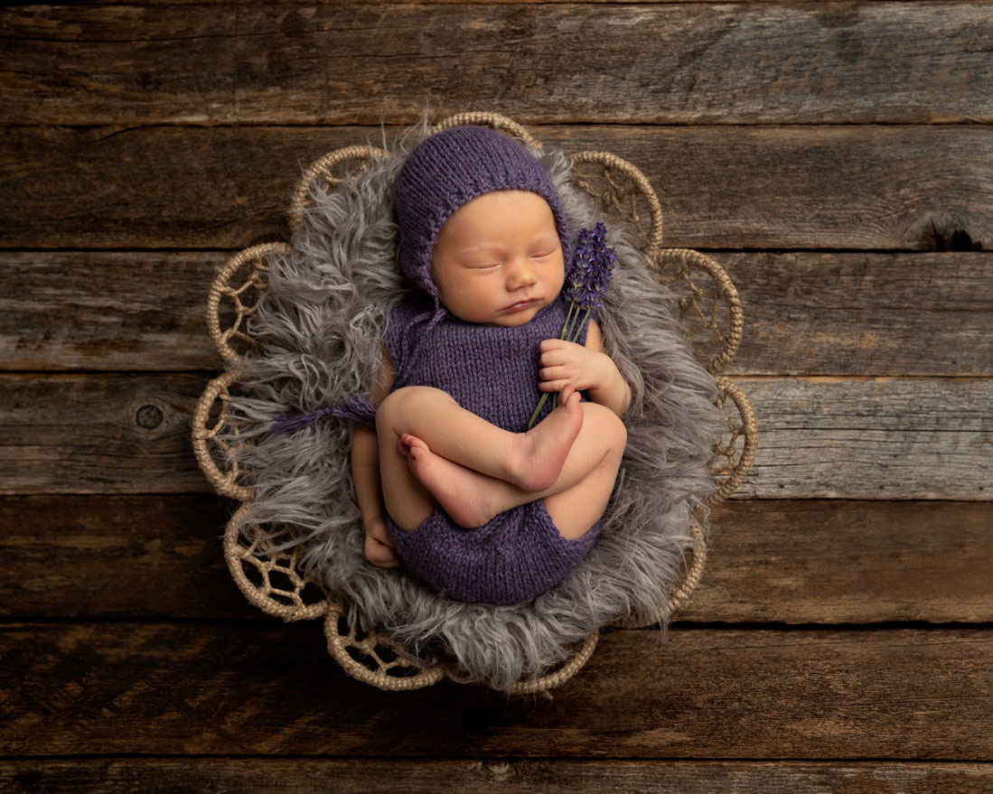 newborn photo in basket with lavender comox valley